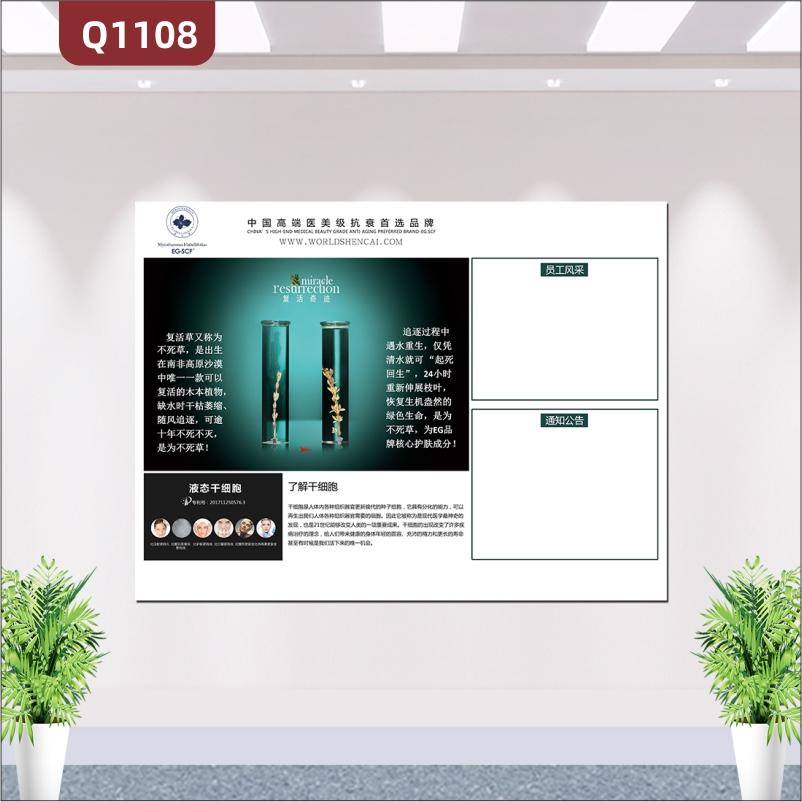 定制企业高端产品展示产品介绍产品图片员工风采通知公告展示墙贴